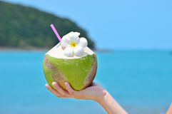 Women holding Tropical green coconut. With exotic flowers and drinking straw Stock Photos