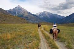 Women on horseback. Altay Stock Images