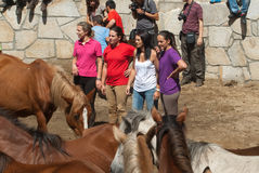 Women and horses Stock Images