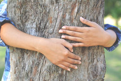 Women hug big tree color of hipster tone selective soft focus, c Stock Photography