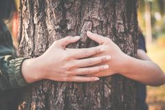 Women hugging big tree color of hipster tone selective soft focus. Concept nature and people protect environment Stock Image