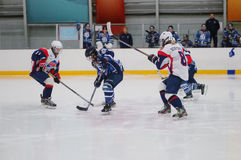 Women ice hockey match Dinamo St. Petersburg vs Biryusa Krasnoyarsk. St. Petersburg, Russia - February 17, 2016: Women's ice hockey match Dinamo Saint-Petersburg Royalty Free Stock Images