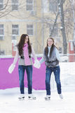Women ice-skating holding hands Stock Images