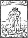 Women illustrated in field