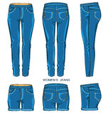Women jeans pants and shorts Royalty Free Stock Images