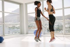 Women jumping together with skipping rope in gym stock photo