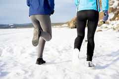 Women keeping fit Royalty Free Stock Photos