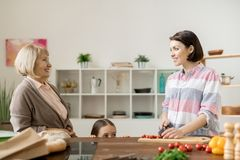 Women in the kitchen royalty free stock photo