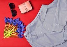 Women& x27 ; l'habillement et les accessoires de s sont rayés sur un fond rouge Chemisier, bourse, lunettes de soleil, wildflower Image libre de droits