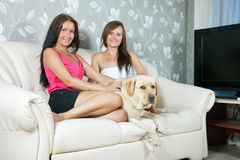 Women with  labrador retriever  on sofa Stock Images