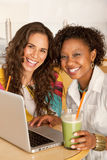 Women on a Laptop royalty free stock photos