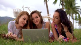 Women lay on grass using laptop together during picnic in the countryside. Three girls on vacation stock footage