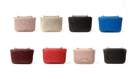 Women leather bags isolated on white background Royalty Free Stock Photo