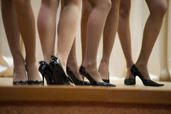 Women legs Stock Image