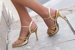 Women legs in fishnet Royalty Free Stock Photo