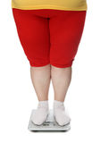 Women legs with overweight. Standing on scales Stock Images