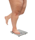 Women legs with overweight. Standing on scales Stock Photography
