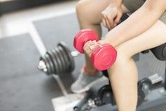 Women lift the dumbbell for exercise. Stock Photo