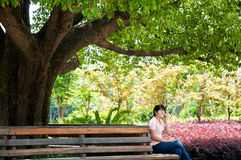 Women listen to music under the tree Stock Photo