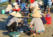 Women at the local market in Nha Trang, Vietnam Royalty Free Stock Photography