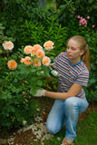 Women look after the flowers. Young happy women working in garden royalty free stock image