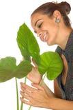 Women maintain plant Stock Photos