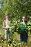 Women making birch branches Royalty Free Stock Images