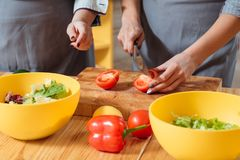 Women making salad healthy nutrition lifestyle royalty free stock photography