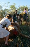 Women moving a dead cow in South Africa Stock Photography