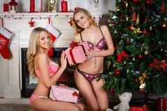 Women near Christmas tree. Stock Photos