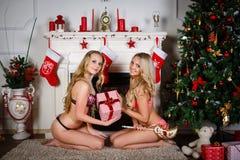 Women near Christmas tree. Royalty Free Stock Photography