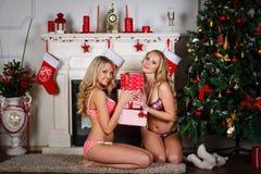 Women near Christmas tree. Stock Photography