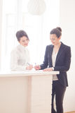 Women in office. Two  attractive friendly young businesswomen talking and smiling to each other at informal meeting in modern office Royalty Free Stock Photo