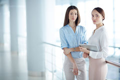 Women at office Royalty Free Stock Photography
