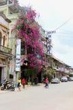 Women old buildings hotel street scene, Battambang, Cambodia Royalty Free Stock Photography