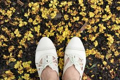 Women oxford leather shoes on ground, Explore the world concept. Royalty Free Stock Photos