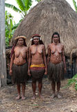 The women of a Papuan tribe Royalty Free Stock Photography