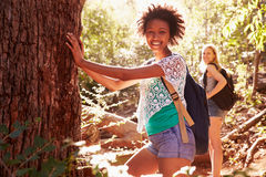 Women Pausing By Tree Trunk In On Walk Through Forest Stock Image