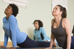 Women Performing Yoga Stock Photo