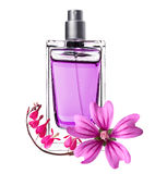 Women perfume in beautiful bottle and pink flowers. Isolated on white Stock Image