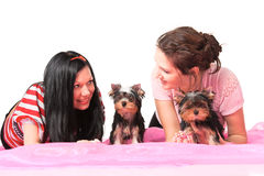 Women with pets. Beautiful young women with small dogs Royalty Free Stock Image