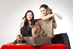 Women with pets. Beautiful young women with small dogs Royalty Free Stock Photography