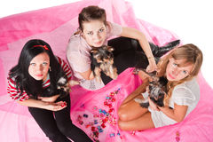 Women with pets. Three young women with small dogs. Top view Stock Photography