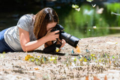Women photographers take photos Butterfly Stock Photography