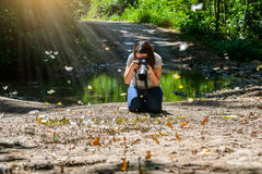 Women photographers take photos Butterfly Stock Image