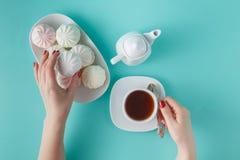 Women pick pastel colored marshmallow Royalty Free Stock Photos