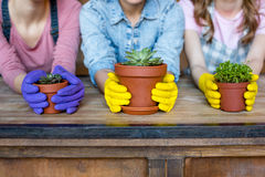 Women with plants in flowerpots Royalty Free Stock Photography