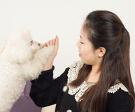 Women and Poodle Stock Photos