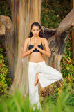 Women practicing yoga in nature, outdoors Royalty Free Stock Photo