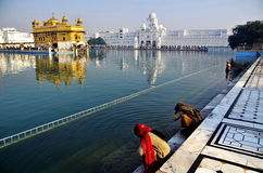 Women praying at Golden Temple Amritsar. Women praying at Golden Temple in Amritsar India,  showing their devotion to god Royalty Free Stock Images